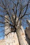 Италия, башни San Gimignano Стоковое Изображение
