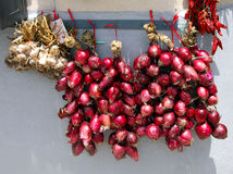 Италия, зона Калабрия, красный лук Tropea (rossa Cipolla) Стоковое Изображение RF