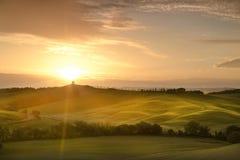 Италия Тоскана Сельский ландшафт на зоре Стоковое Фото