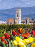 Италия, Флоренс, башня Giotto Стоковое Изображение RF
