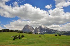 Итальянка Альпы на лете Стоковое Изображение RF