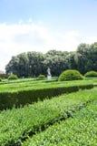 итальянка сада Стоковые Фотографии RF