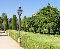 итальянка сада Стоковое Изображение