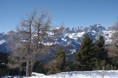 Итальянская зима 5 снега andalo горных вершин Стоковое Изображение