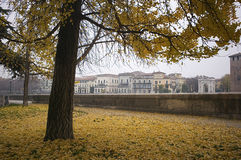 Итальянская осень в Вероне стоковое изображение