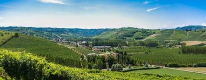 Итальянские виноградники Стоковое фото RF