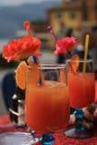 Итальянские коктеили Стоковая Фотография RF