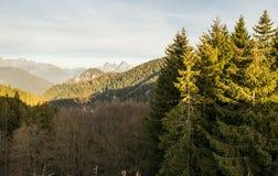 Итальянские доломиты Trento Стоковое Фото