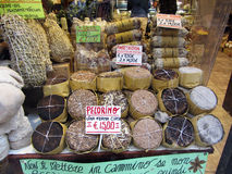 Итальянские сыры для продажи Стоковая Фотография RF