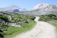 Итальянский ландшафт горы в природном парке Dolomiti FANES Стоковое Изображение