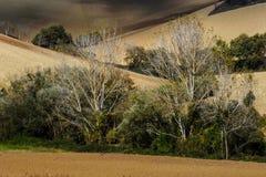 Итальянский ландшафт падения Стоковые Изображения