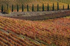Итальянский ландшафт падения Стоковые Фото