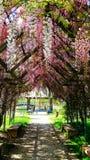 итальянский парк стоковое изображение rf