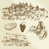Итальянский сельский ландшафт - виноградник Стоковые Изображения RF