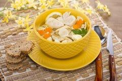 Итальянский суп с макаронными изделиями цыпленка и гриба Стоковые Изображения RF