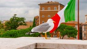 Итальянский флаг в городе Рима стоковые изображения rf