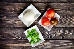 Итальянское caprese, моццарелла, томаты, базилик Стоковая Фотография