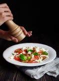 Итальянское caprese, моццарелла, томаты, базилик Стоковое Изображение RF