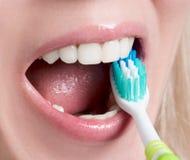 личная зубоврачебная гигиена Стоковое Изображение