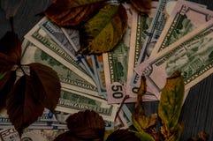 15 и 100 долларовых банкнот помещены как предпосылка Стоковая Фотография