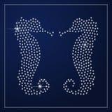 Идентичность диаманта клеймя Стоковое Фото