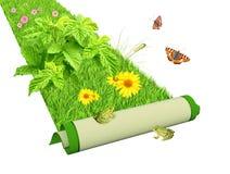 Идет зеленый цвет Стоковая Фотография