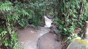 идет дождь река стоковое фото