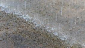 Идите дождь падение Стоковые Изображения RF