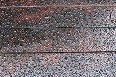 Идите дождь падения Стоковые Фотографии RF
