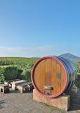 Идилличное место на немецком винном маршруте, Германии Стоковые Фотографии RF
