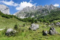 Идилличный ландшафт горы в австрийских горных вершинах Более одичалое Kaiser, Тироль Стоковые Фотографии RF
