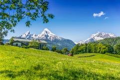 Идилличный ландшафт лета с традиционным домом фермы в Альпах стоковая фотография rf