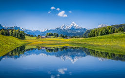 Идилличный ландшафт лета с ясным озером горы в Альпах Стоковые Фото