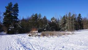 Идилличный ландшафт зимы Стоковое фото RF