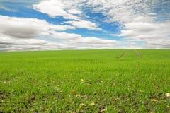 идилличный ландшафт Стоковая Фотография