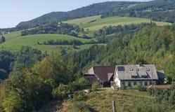 Идилличный мирный пейзаж черного леса Стоковая Фотография