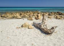 Идилличный пляж Стоковое Изображение