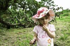 И кто сломало дерево Стоковые Фотографии RF
