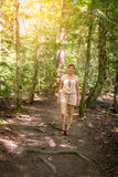 Идти в лес Стоковое Фото