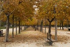 Идти в парк Buen Retiro Стоковое Фото