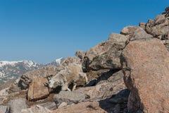Идти козы горы стоковая фотография rf