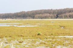 Идти к наблюдательной вышке птицы Стоковые Фотографии RF