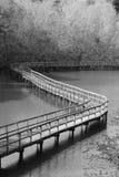 Идти на неподвижную воду Стоковые Фотографии RF
