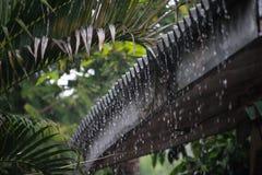 Идти дождь день стоковое изображение