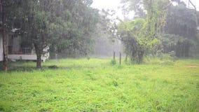 Идти дождь день сток-видео