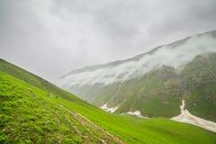 Идти дождь с туманом Стоковые Фото