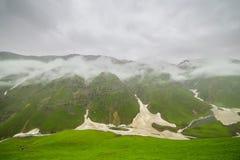Идти дождь с туманом Стоковое Фото