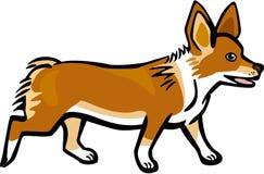 Идти рысью собаки Corgi иллюстрация вектора