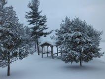 Идти снег внутри Стоковые Изображения RF