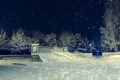 Идти снег в парке Стоковая Фотография